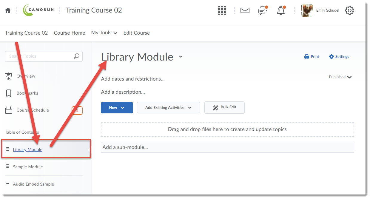 Click the title of the Module to which you want to add your library resource links