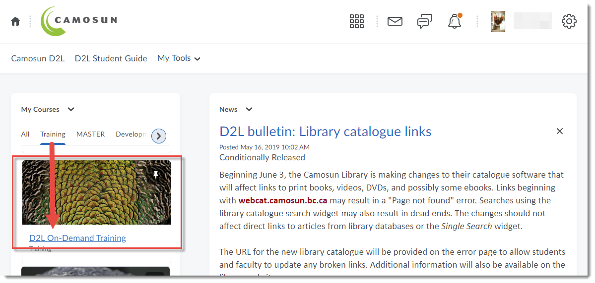 Click D2L On-Demand Training